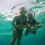 Starfish found snorkeling
