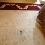 carpet mess