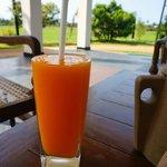 Fresh fruit juice from the garden