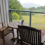 Look at the bird! That is how close to nature you will get from Mountain view room :)