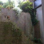 Jardin - Chambre 4 et 3