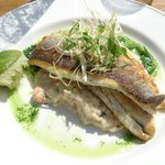 Seabass for lunch - so full of flavour Mmmm.