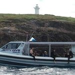 Wildfin Diveboat at South Solitary Island
