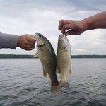 great fishing