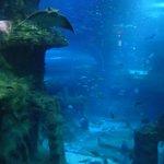 Künstliches Becken mit Millionen Liter Wasser