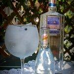 Gin&Tonic Martin Miller's