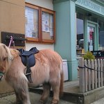You dont have to come by car! Foot, cycle or pony is fine