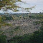 Aloe View Rock Lodge Foto