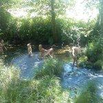 Chapuzón en el río