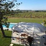 Zwembad en de wijngaard aan de zuidkant
