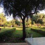 Terrasse / jardin