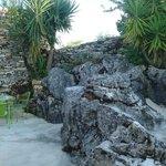 Jardim casa do limoeiro