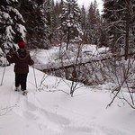 La raquette/Snowshoeing
