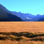 Eco Tours Milford Sound - Day Tours