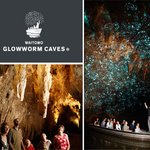 Visit nearby Waitomo Caves