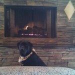 Aspen sitting by lobby fireplace