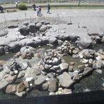 七つの温泉の湧出口