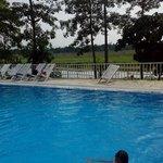Swimming Pool, River & the Jungle