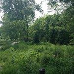 Foto de Fresh Pond Reservation