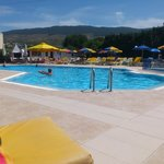 Nicon Apartments Pool, spotlessly clean and tidy, plenty of sun loungers at all times.