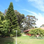 Sehr gepflegter Garten - viel Platz für Kinder