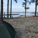 View towards Pocomoke River from our pitch