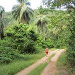 Running through the jungle