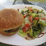 Hamburger and tasty salad.