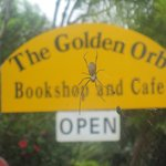 Golden Orb Spider greets you at the gate
