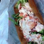 Allison's famous lobster roll