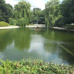 Łazienki-Park (Park der Bäder)