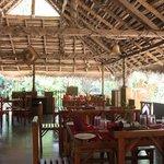 Sauketha - Restaurant interior