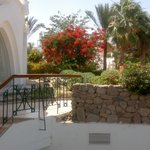 Photo of Melia Sinai