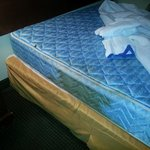 urine stained mattress