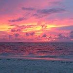Another amazing sun set