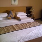 jacuzzi suite room 2
