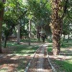 Parque Cubbon
