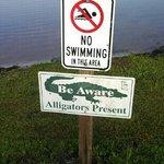beware.... ( I didn't see any tho)