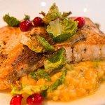Swordfish - Butternut Squash Risotto, Crispy Brussels, Blistered Cranberry Vinaigrette