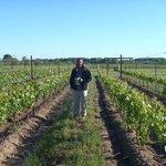 In the vineyard behind Harvest House