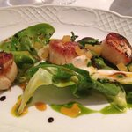 scallops special