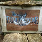 Blue Boar