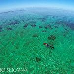 Snorkeling trip with Emaho Sekawa