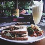 Le sandwich au poulet au concombre miel et aux graines de sésame