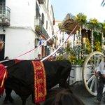 Homage to Virgen dela Rocio.