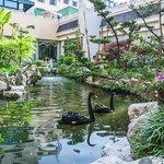 Garden in Hotel