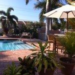 Φωτογραφία: Hibiscus Suites - Sarasota / Siesta Key