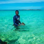 """""""Sharkbait"""", our guide, just found a small stingray"""