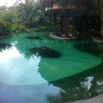 The swim up bar pool