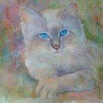 """Pat Donlin """"Cat"""""""